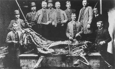 Members of the Ontario Veterinary College class of 1899